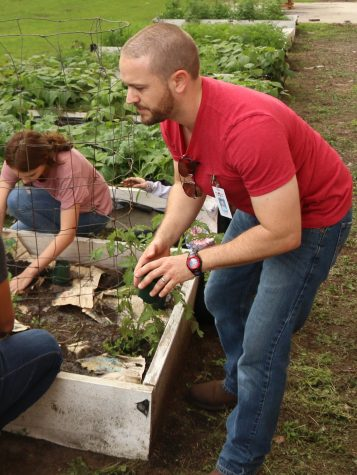 Environmental club plants for Culinary Department