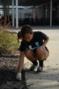 Clubs, sports participate in campus clean-up