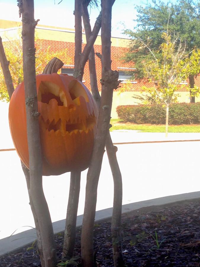 Culinary students carved pumpkins from the boy's varsity soccer pumpkin patch and left them various places around school to get people in the Halloween spirit.