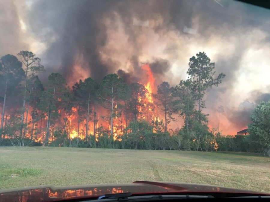 The+Sterling+Creek+fire+burns+through+vegetation+close+to+Live+Oak+Reserve.+The+blaze+was+contained+at+2+a.m.++the+next+morning.