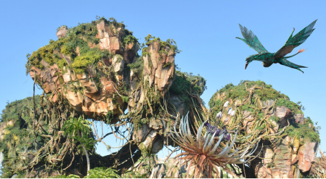 A  virtual banshee soars above the floating mountains of Pandora. Disney photographers around the land were available to capture memories and add small bits of magic, like the Banshee pictured.