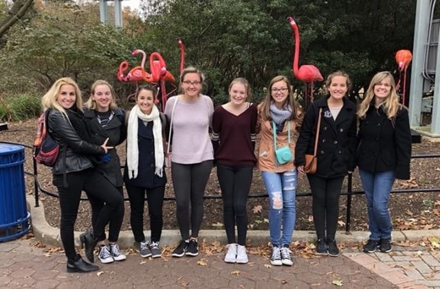 Some band members pose in front of flamingos for a picture. They traveled to D.C. for a parade.
