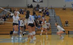 Volleyball wins first home game of the season