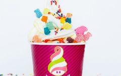 Menchie's  is a popular frozen yogurt location that has more than 500 locations across the United States.
