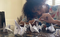 Senior Hamza Zeini folds origami cranes at home, that will count as service hours towards the Asian Culture Club. The club will be donating these to the Children's Peace Monument in Hiroshima, Japan.