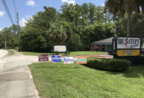 Yard signs for various political candidates in the Winter Springs area.