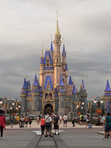 While Universal Orlando and Islands of Adventure opened on June 5, and Seaworld Orlando on June 11, Walt Disney World waited until July 11 to open Magic Kingdom and Animal Kingdom. Epcot and Hollywood Studios followed on July 15.