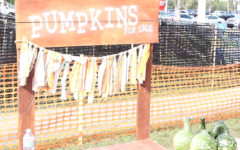 Hagerty Farms Pumpkin Patch